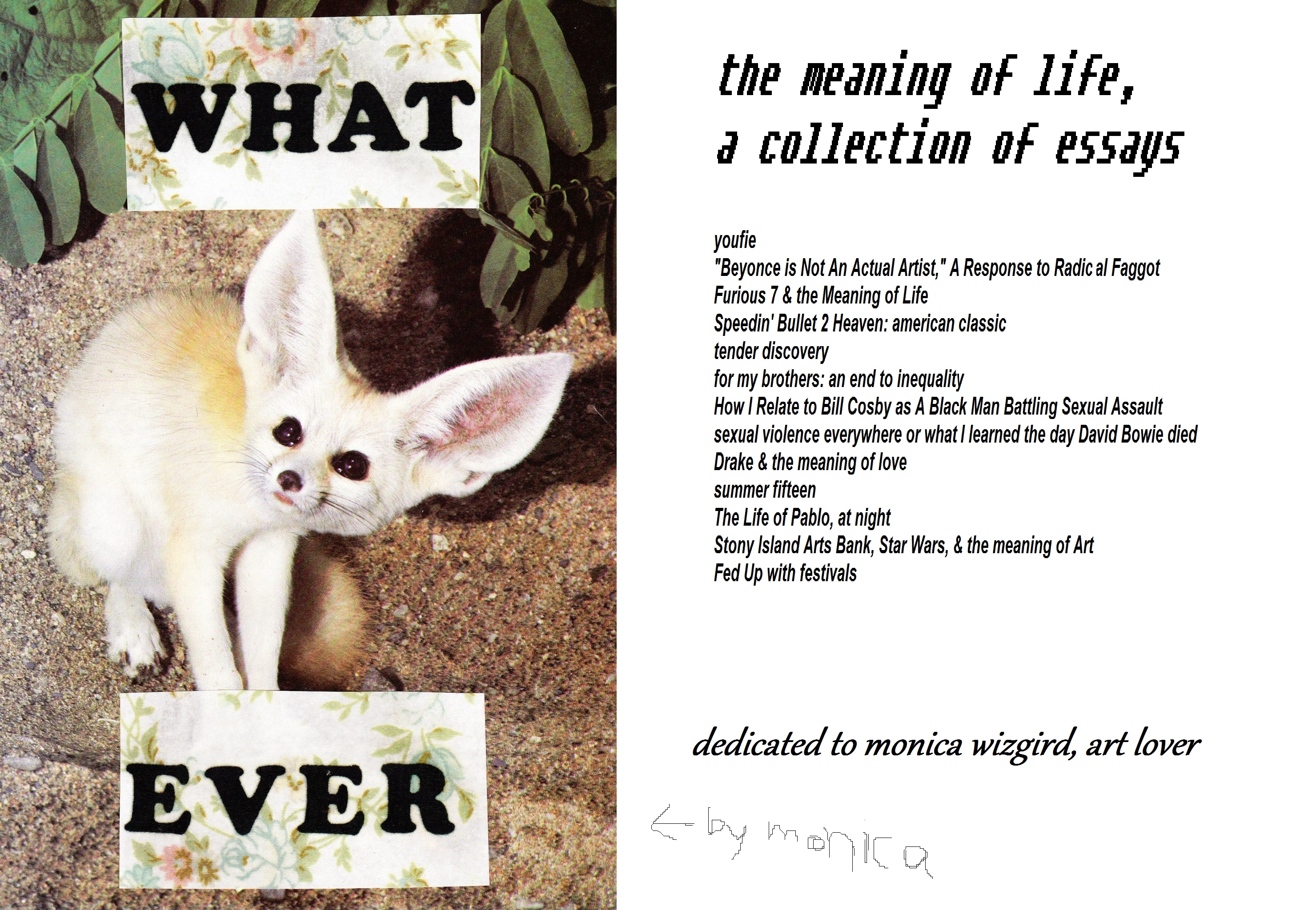 the meaning of life a collection of multimedia essays le tender the meaning of life